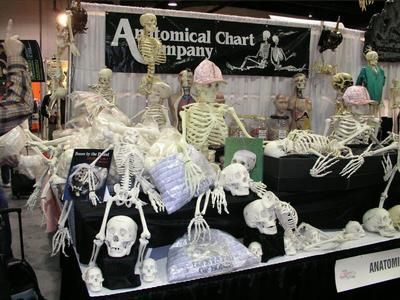 2004 Transworld Haunter Section - Anatomical Chart Company - Picture