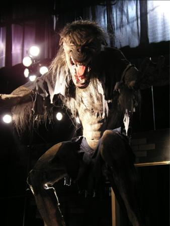 2005 Transworld Dark Zone - Scarefactory - Picture