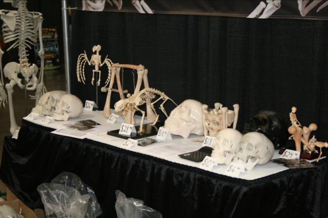 2008 Midwest Haunters Convention - Buckys Boneyard - Picture