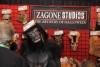 Zagone Studios