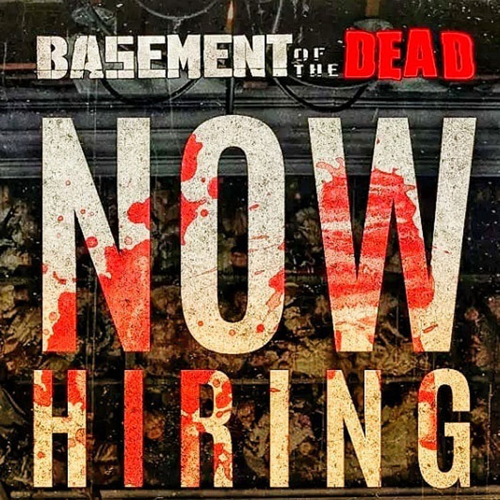 Basement of the Dead in Aurora, IL.