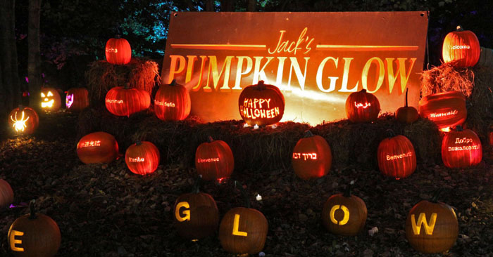 HauntedIllinois.com's review of Jack's Pumpkin Glow Chicago... Jack's Pumpkin Glow is 1/3 mile trail filled with over 5,000 hand carved jack o' lanterns. You will experience everything from artistically detailed single pumpkin carvings to amazing, larger-than-life structures. Jack's Pumpkin Glow is a family friendly event also featuring fall food and beverages and live demonstrations with our carvers! Come GLOW with us!